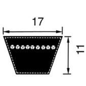 Courroie pour faucheuse Vicon DMP-2800